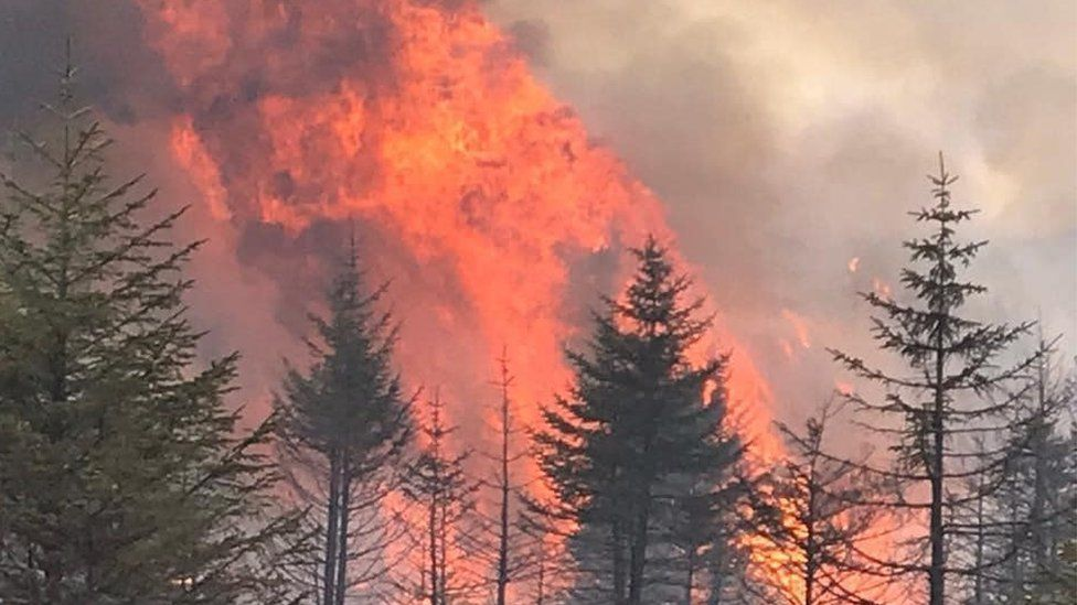 Wildfire risk 'very high' as lockdown eases