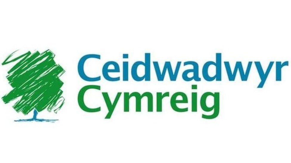 Logo y Ceidwadwyr