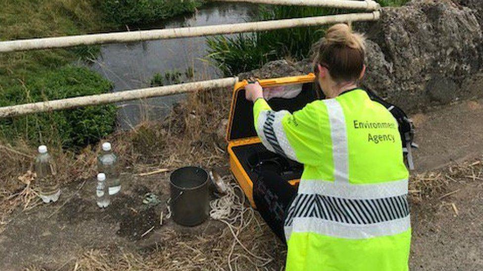 Environment Agency worker testing water samples
