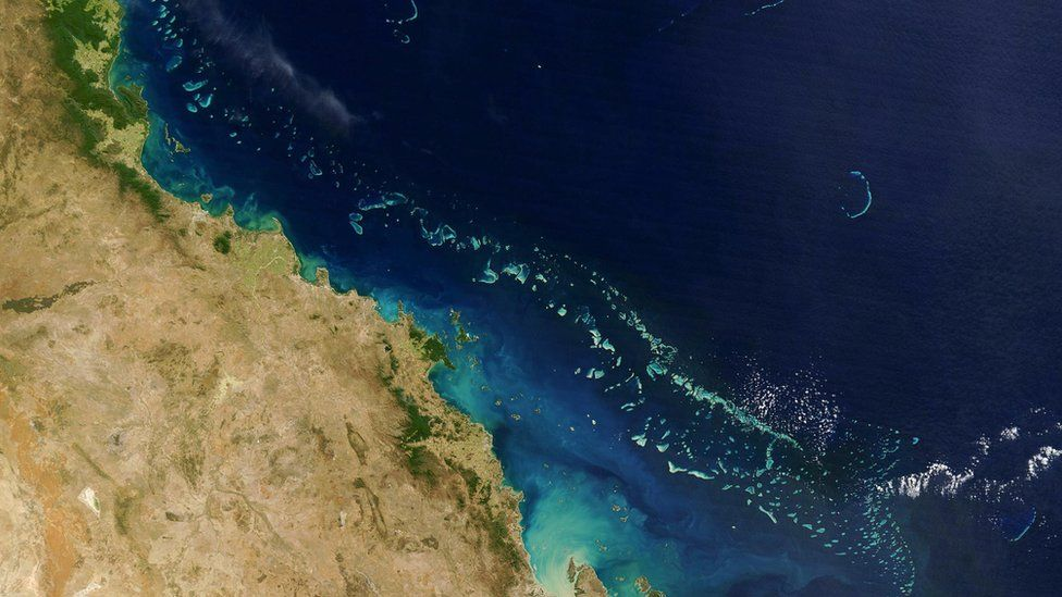The Great Barrier Reef is the world's largest living structure and can be seen from space.
