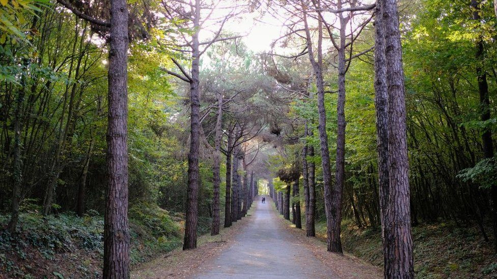 Visitors walk on a walking track in Belgrad Forest on an autumn day in Istanbul, Turkey