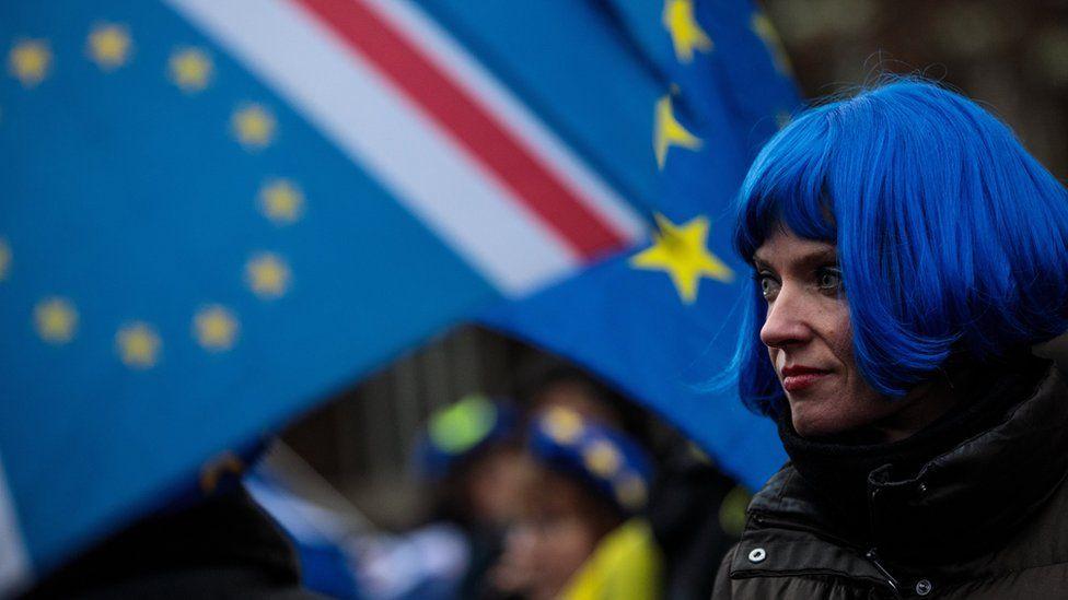 EU supporter