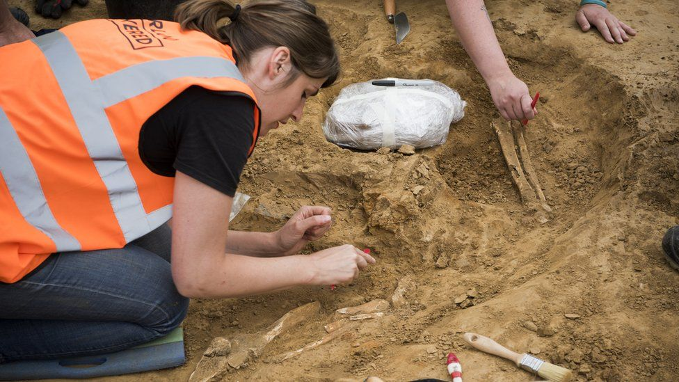 A human bone is excavated in a dig at the Mont-Saint-Jean field hospital.