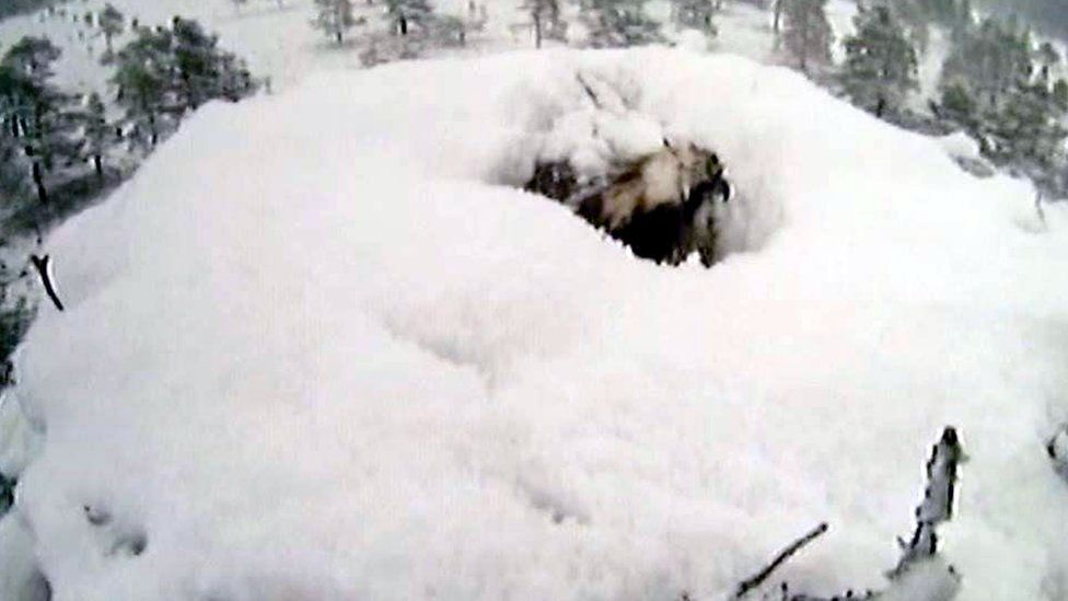 Osprey EJ on snow covered nest