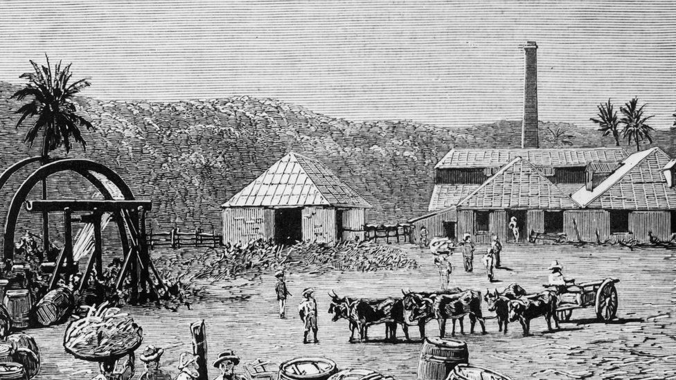 Sugar mill pictured in the late 1800s