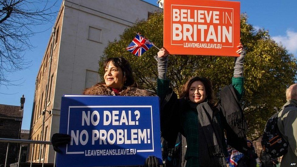 Pro-Brexit protesters