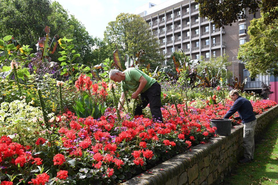 St Helier Parks Gardeners tend to the exotic beds in Parade Gardens
