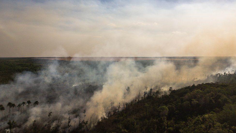 Fire in Brazil's Cerrado near croplands