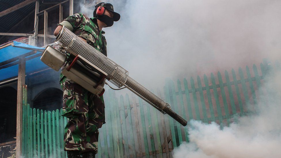 Insecticide fogging