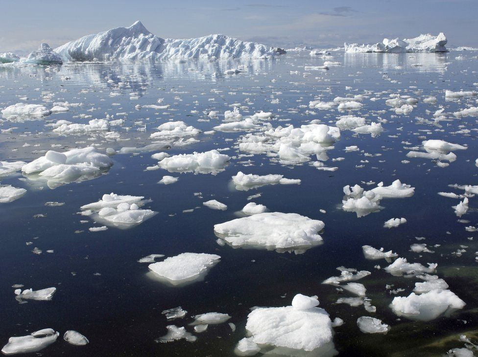Ice floes near Greenland