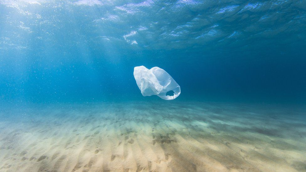A single plastic bag floats in the ocean