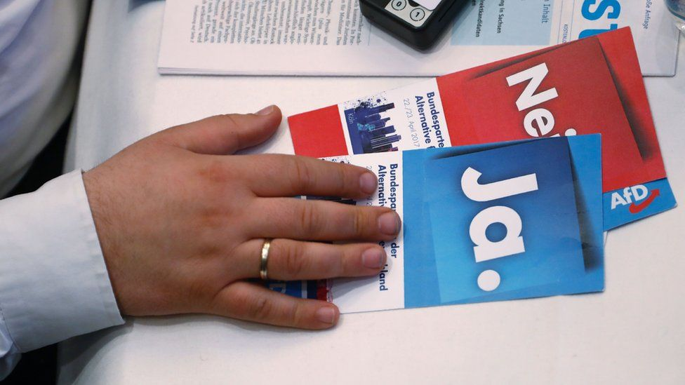 A delegate holds voting cards at an AfD conference
