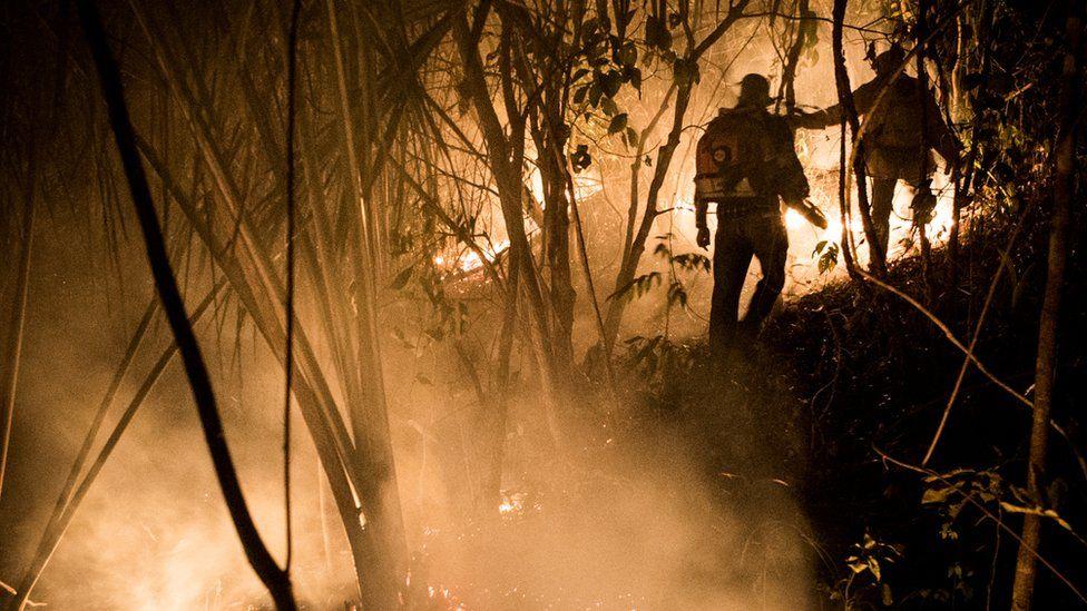Voluntários e o fogo