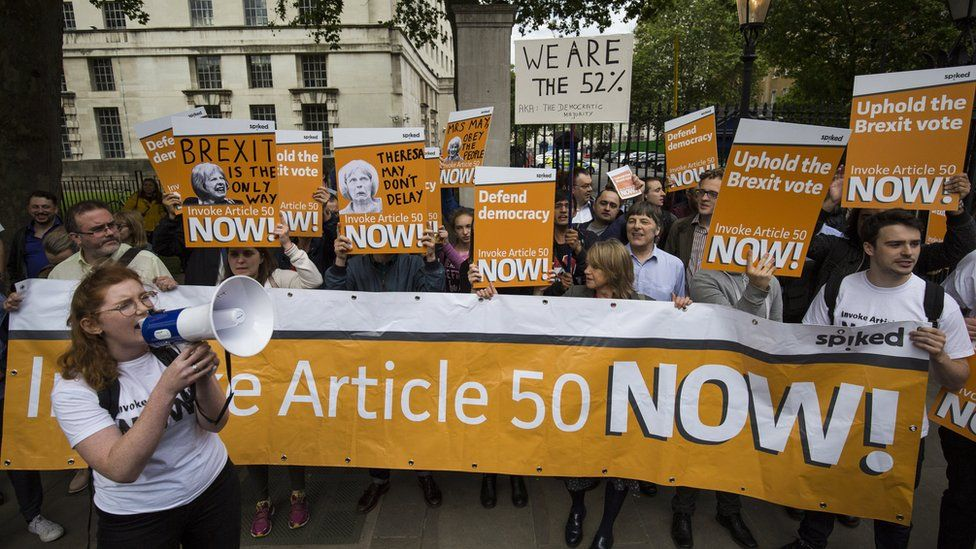 Article 50 protesters