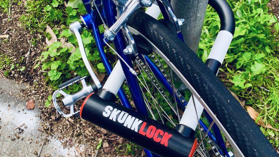 A Skunk Lock