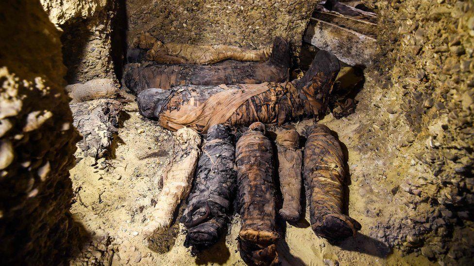 The mummies found in Minya