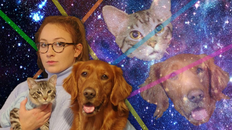 Alison from Houston, Texas with her dog Charlie and Cat Hugo.