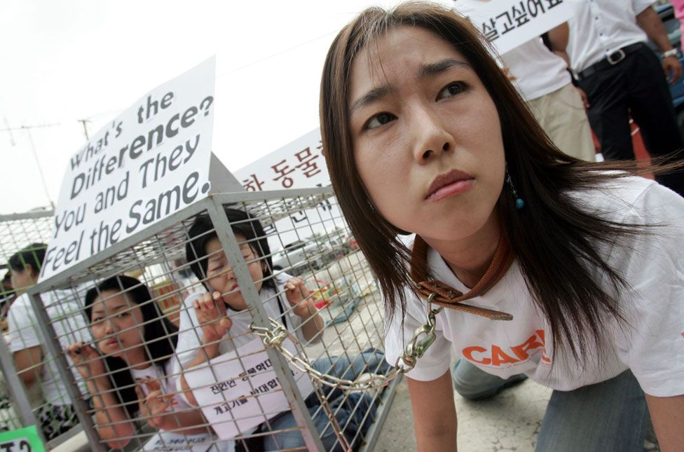 Members of the Coexistence of Animal Rights on Earth group sit in a cage during a campaign opposing the eating of dog meats by South Koreans at the Dog Meat market in SungNam in 2007