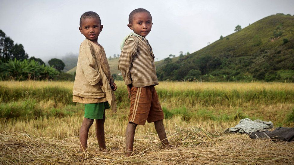 Boys in Madagascar rice field