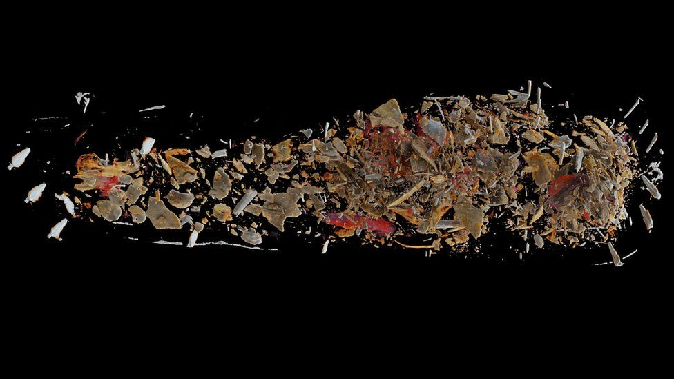 A CT scan of the contents