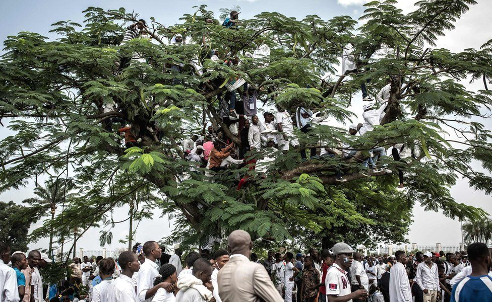 People on a tree in the grounds of the presidential palace in Kinshasa, DR Congo - 24 January 2019