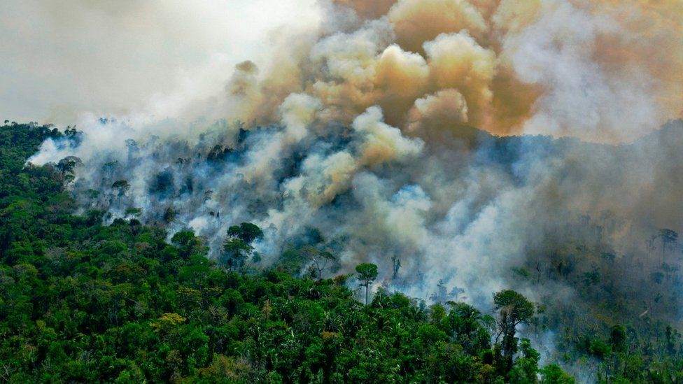 An area of the Amazon burning
