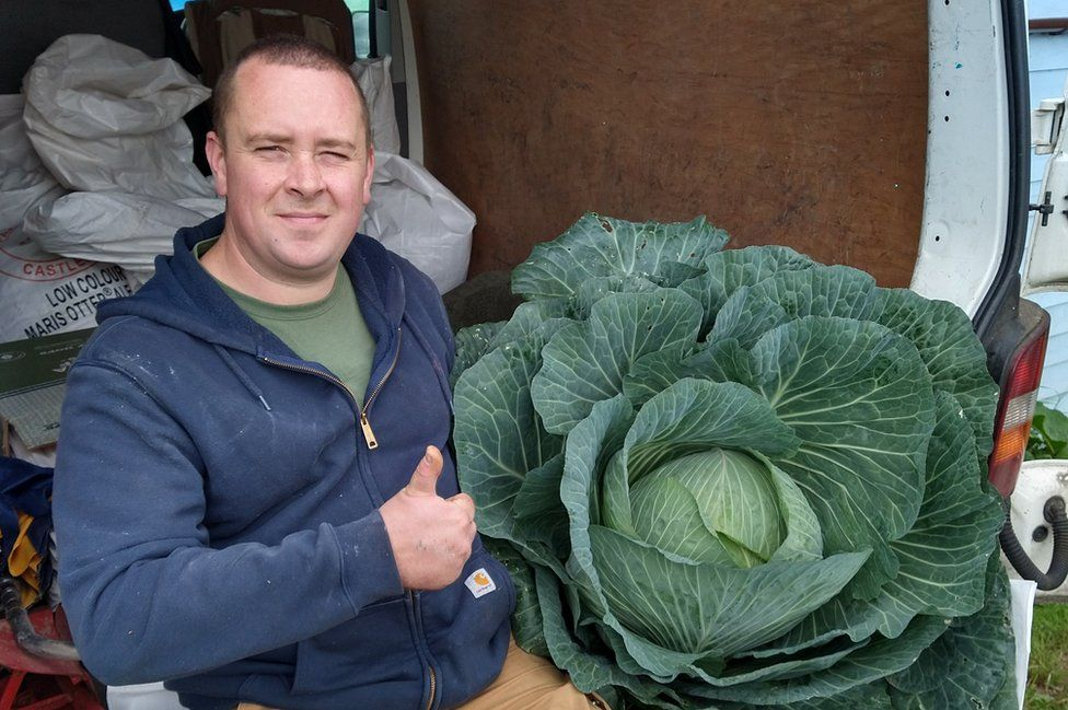 Dominic Driscoll with his giant cabbage