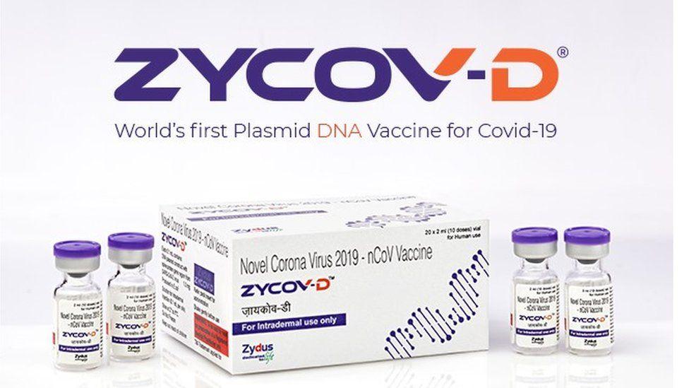 Zydus Cadilla vaccine