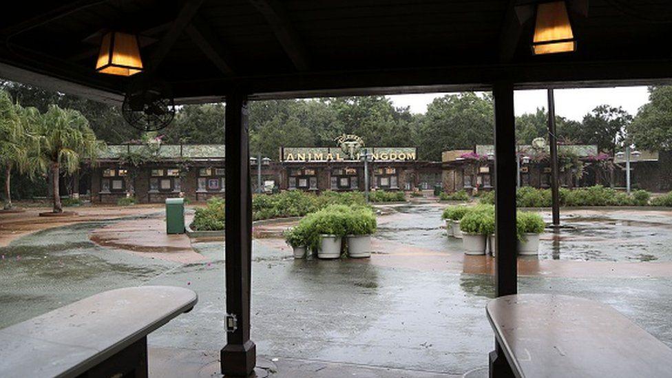 The entrance to the Animal Kingdom theme park at Walt Disney World