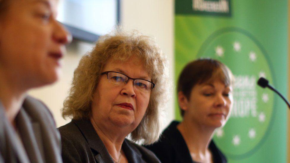 Green MEP Jean Lambert