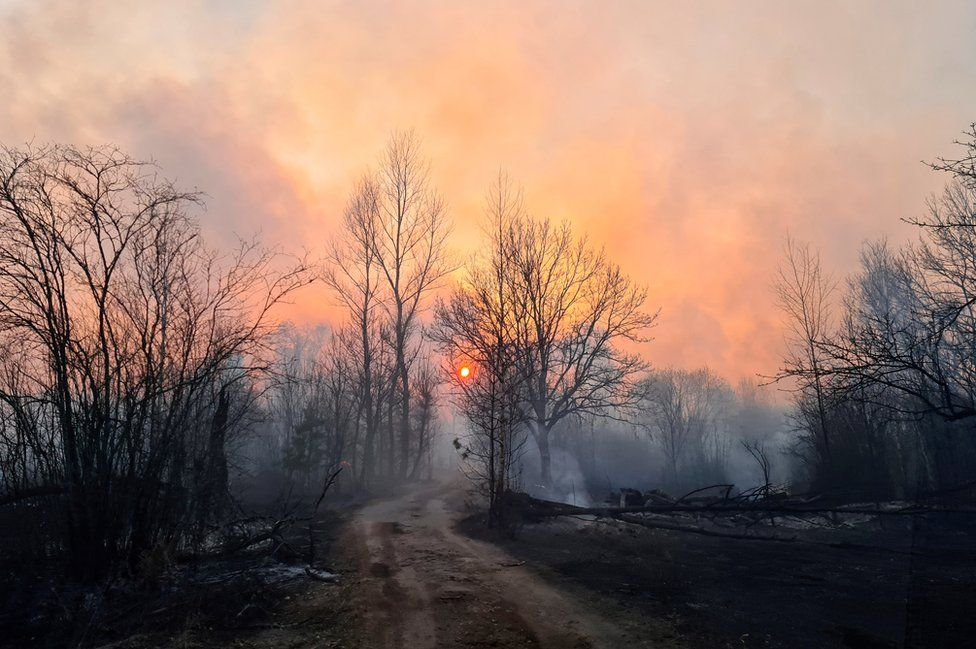 Smoke rises from a forest fire in the exclusion zone around the Chernobyl nuclear power plant, outside the village of Rahivka, Ukraine on 5 April 2020