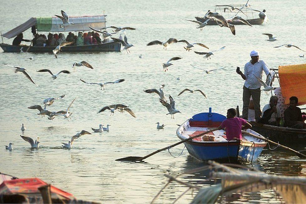 Indian Hindu pilgrims enjoy a boat ride as sea gulls fly at Sangam in Allahabad on October 29, 2018.