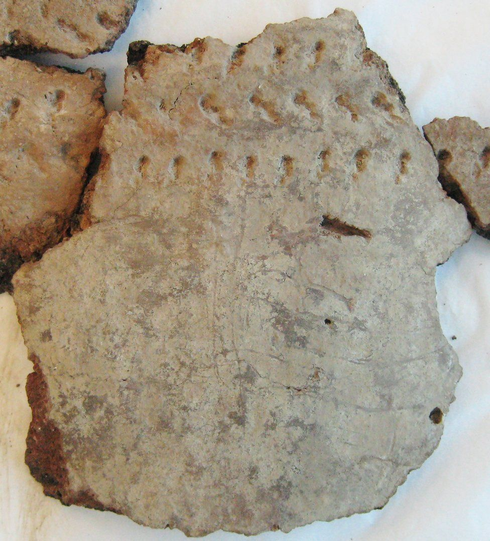 Sherd of pottery with badger claw marks