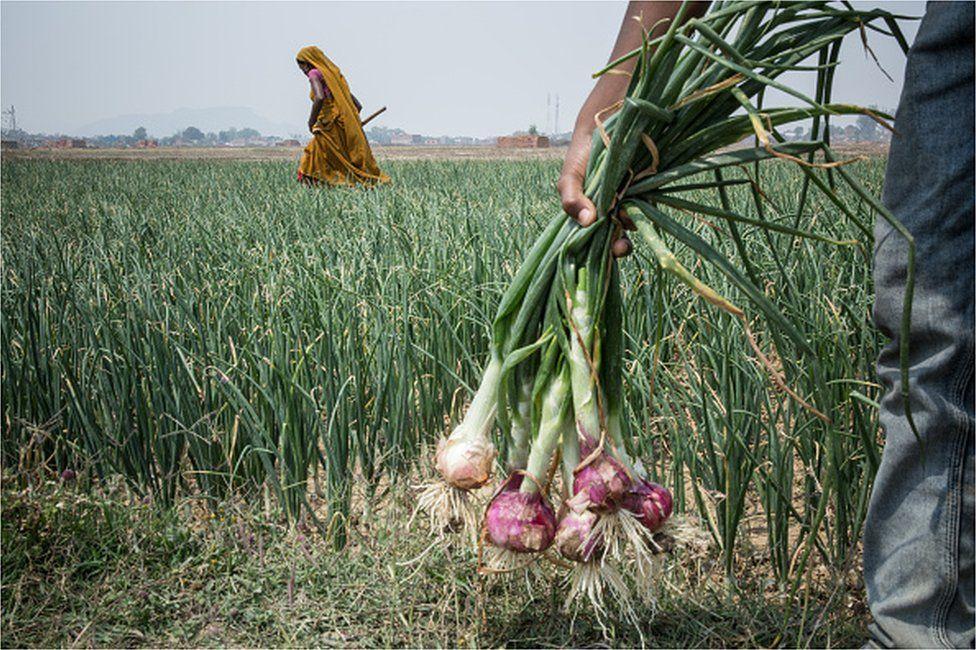 Jharkhand tribal land