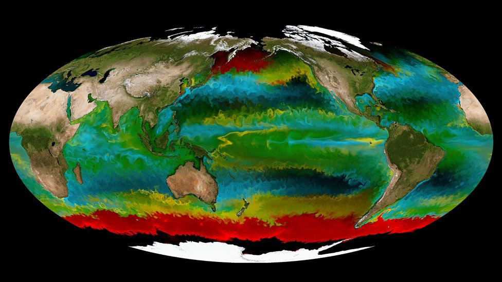 Satellite image showing four different types of phytoplankton (red, yellow, green, cyan)
