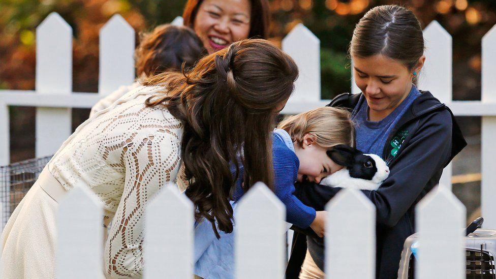 Princess Charlotte petting a rabbit