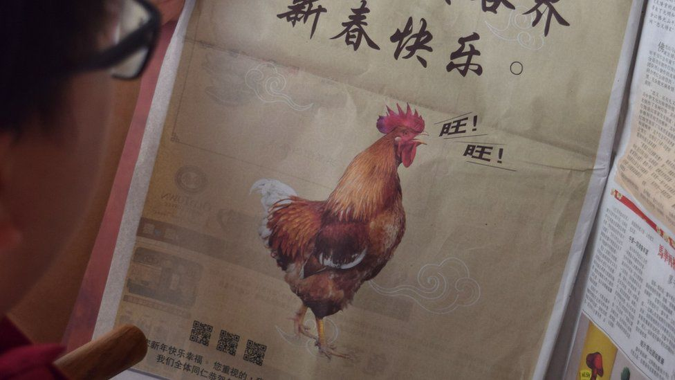 This photo illustration taken on February 16, 2018 shows a man looking at a full-page Lunar New Year advertisement in Kuala Lumpur showing a rooster.