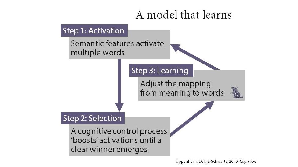 The word production model Dr Oppenheim has devised with others