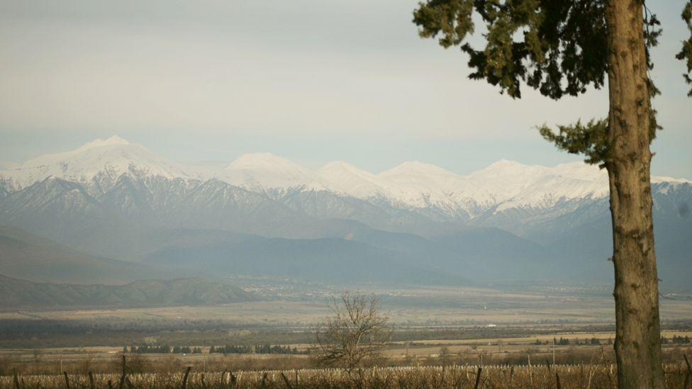 Georgia's Kakheti wine region