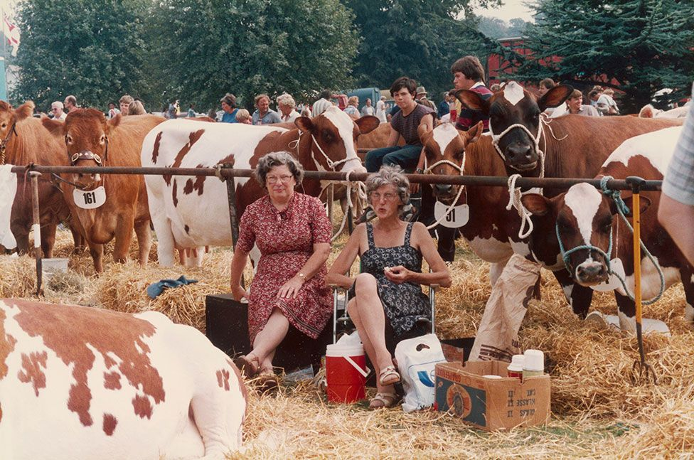 Two women sit on hay bales and eat food whilst surrounded by cows