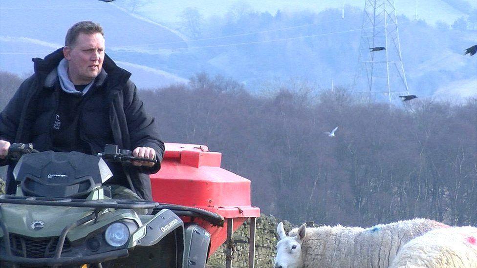 Doddie on the farm