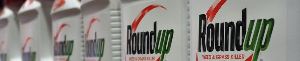 Bottles of Monsanto's Roundup are seen for sale June 19, 2018 at a retail store in Glendale, California