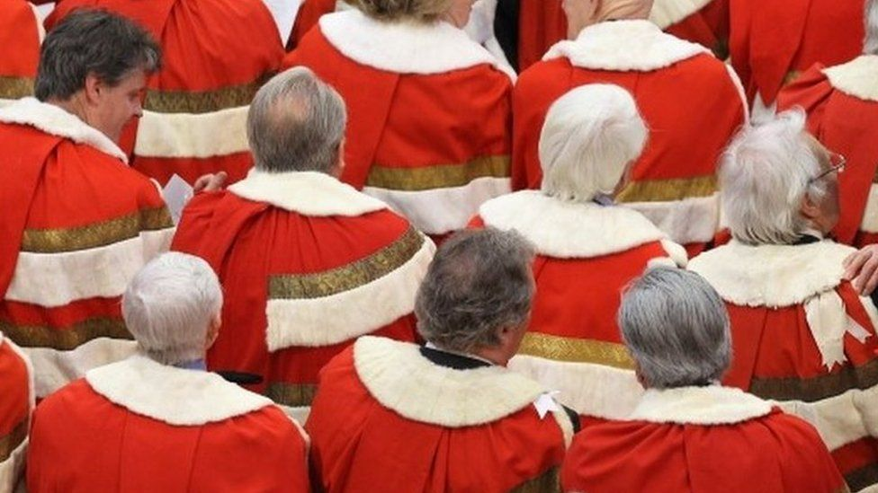 Peers at State Opening of Parliament