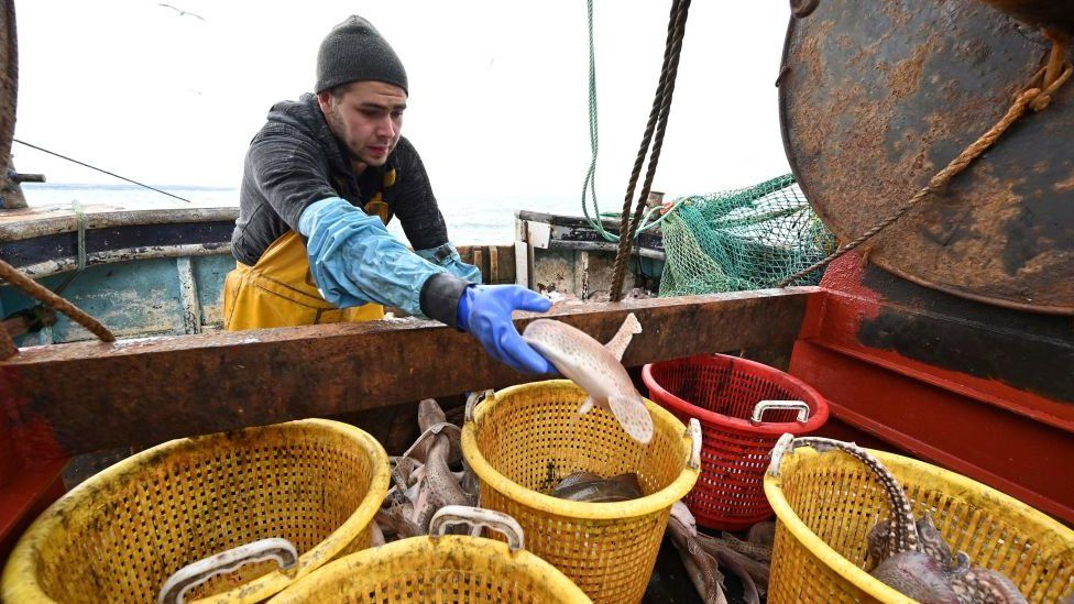 Fisherman on a boat putting a fish into a bucket