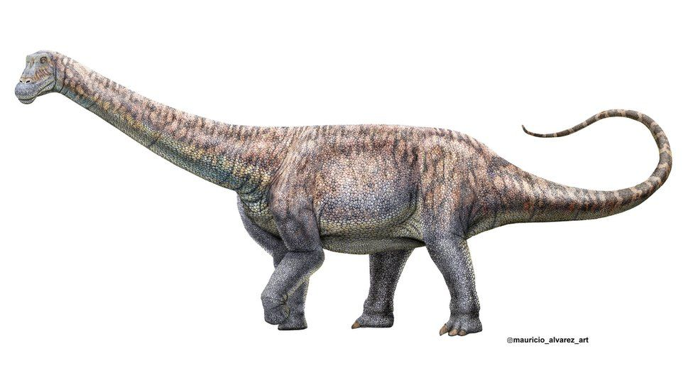 New species of dinosaur unearthed in Chile's Atacama desert thumbnail