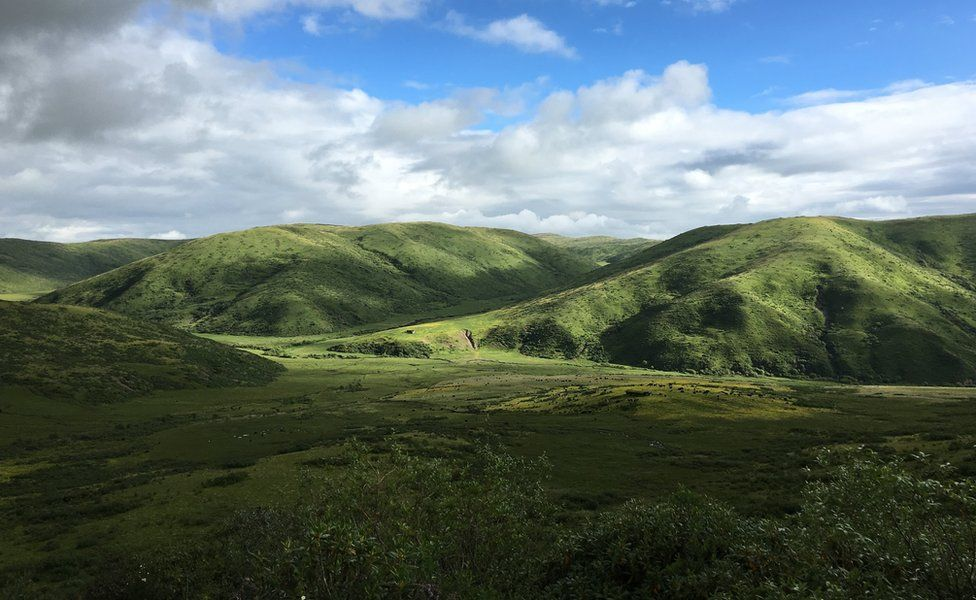 Wide shot of hills and valleys and plains covered in green grass