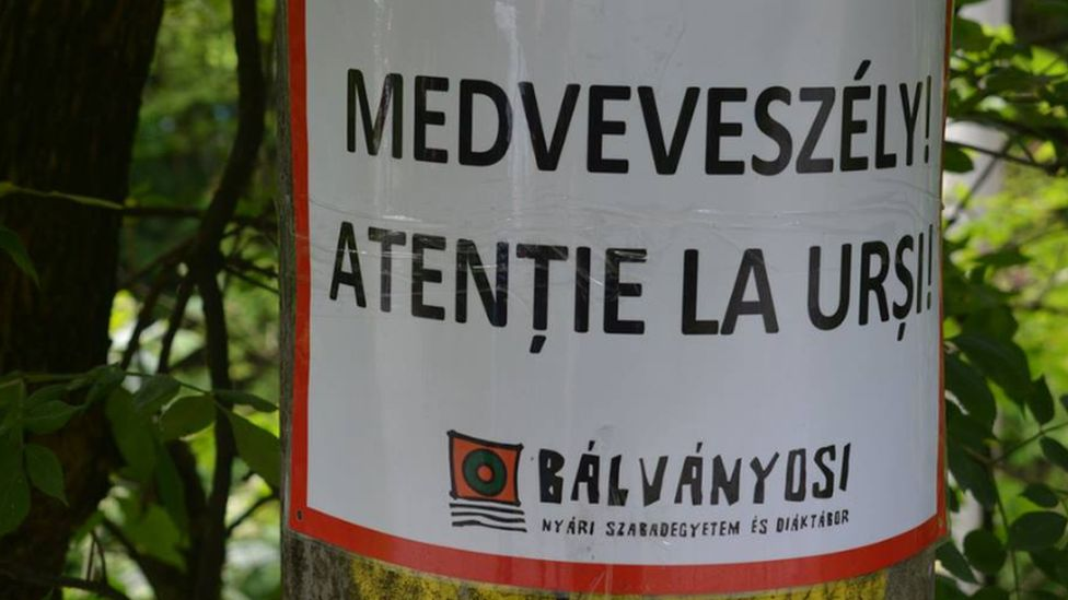 Beware of the bear signs of the Free Summer University and Student Camp in Baile Tusnad/Tusnadfurdo, Romania, July 2018