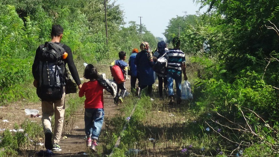 Migrants crossing from Horgos to Roszke, 24 August 2015