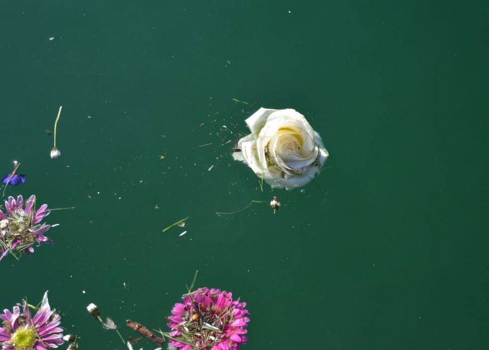 Brightly coloured flowers float in deep blue water