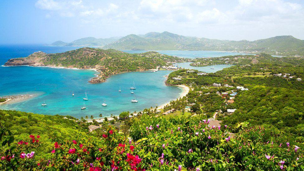 El amargo infierno creado por los británicos que fueron por el azúcar de las islas caribeñas